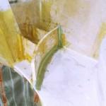 davit step front glassed in 1